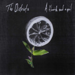"""The Districts, """"A Florish And A Spoil"""" ([PIAS]Coop/Fat Possum)"""