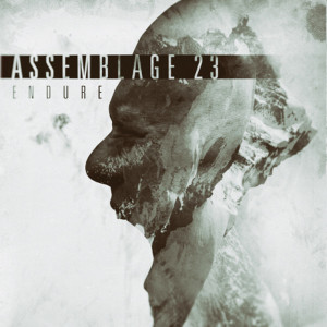 "Assemblage 23: ""Endure"" (Metropolis Records/Soulfood)"