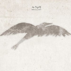 "Sky Flying By: ""Miscellany"" (Fluttery Records)"