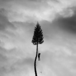 "Manchester Orchestra: ""A Black Mile To The Surface"" (Concord/Loma Vista/Caroline International)"
